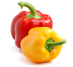Capsicum Yellow/Red